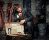 'Fantastic Beasts: The Crimes of Grindelwald' Review: A Charmless and Messy Film